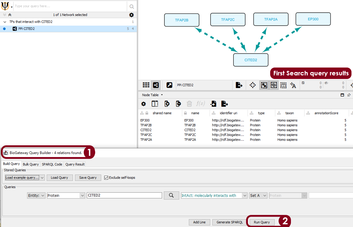 The query is defined in the BioGateway Query Builder to first search for the proteins (TFs) that interact with CITED2 (Step 1). After the query is ran (Step 2), the results are imported into a new network and the query results are visualized with the BioGateway style.